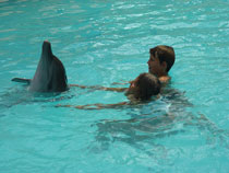 bali dolphin swimming, swim with dolphins